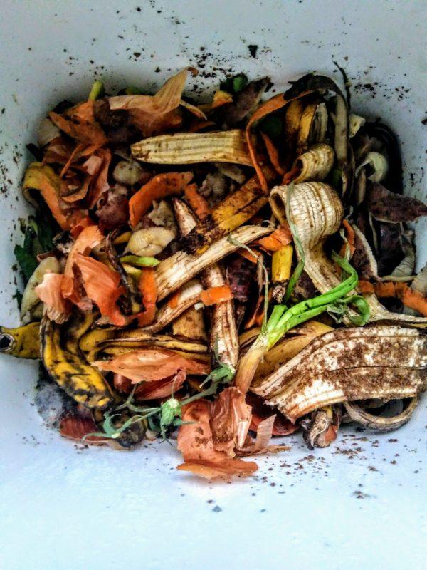 органічні відходи_2